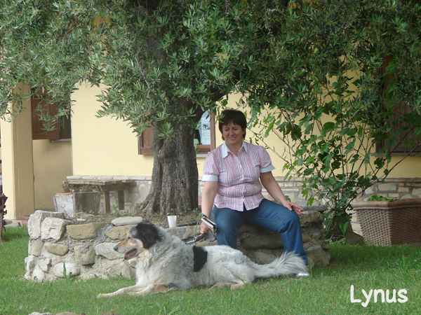 Lynus - cane in vacanza in Umbria