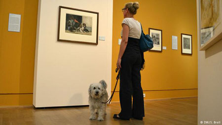 Musei cani ammessi, castelli, parchi | Dogwelcome, dog friendly!