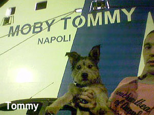 Tommy si imbarca sulla Moby Tommy :-)