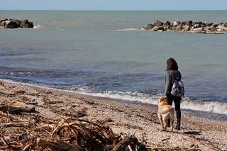 Weekend con il cane al mare