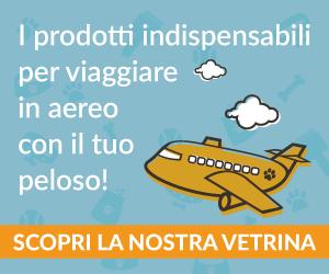 Oggetti utili o indispensabili per viaggiare con il cane in aereo