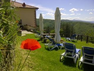 Vacanze pet friendly in Toscana Agriturismo Borgo Tramonte