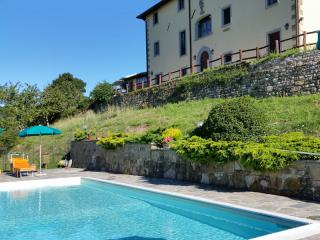 Agriturismo dog friendly in Toscana con educatore cinofilo Borgo Tramonte
