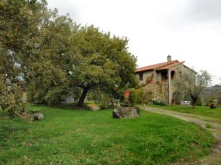Toscana con il cane in agriturismo pet friendly Val d'Orcia Siena