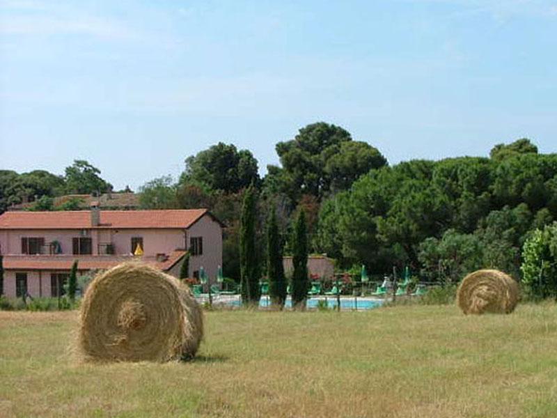 Case Rurali Toscane : Paesaggio colline strada campagna alberi cipressi case rurali