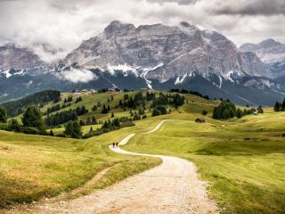 Vacanze e weekend con il cane in Trentino Alto Adige   Dogwelcome