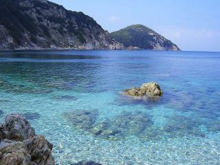 Vacanze con il cane all\'isola d\'Elba | Dogwelcome