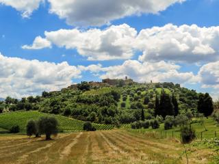 Vacanze e weekend in Toscana con il cane
