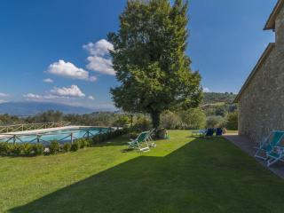 In vacanza con il cane in Umbria: agriturismo pet friendly